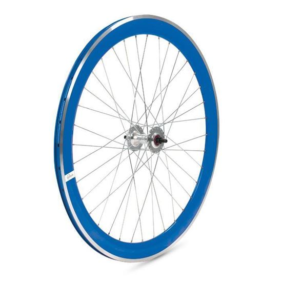 Novarex Fixed H30 - Blu